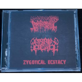 Abhorer / Brain Dead (SG/MY) - Zygotical Ecstacy CD