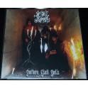 Satanic Ripper (CHL) - Southern Black Spells LP
